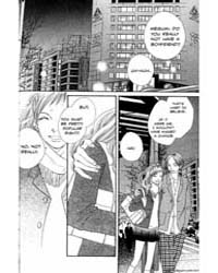 Cat Street 19 Volume Vol. 19 by Kamio, Yoko