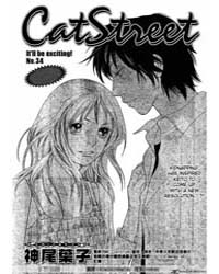Cat Street 34 Volume Vol. 34 by Kamio, Yoko