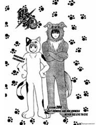 Gintama 208: Cat Owners and Dog Owners N... Volume Vol. 208 by Sorachi, Hideaki
