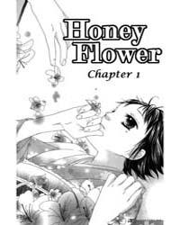 Hachimitsu No Hana 1 Volume Vol. 1 by Tatsuya, Kiuchi