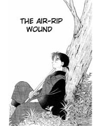 Inuyasha 101 : the Air-rip Wound Volume Vol. 101 by Takahashi, Rumiko