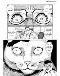 Ito Junji's Cat Diary 2 Volume Vol. 2 by Junji, Itou