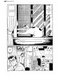 Ito Junji's Cat Diary 6 Volume Vol. 6 by Junji, Itou