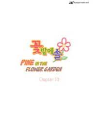 Pine in the Flower Garden 10 Volume Vol. 10 by