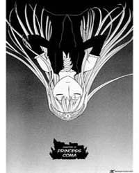 Princess Resurrection 19: Princess Coma Volume Vol. 19 by Mitsunaga, Yasunori