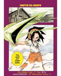 Shaman King 246 Volume Vol. 246 by Hiroyuki, Takei