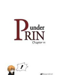 Under Prin 11 Volume Vol. 11 by