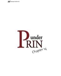 Under Prin 14 Volume Vol. 14 by