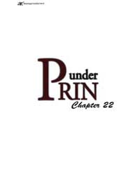 Under Prin 22 Volume Vol. 22 by