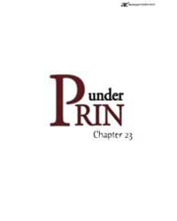Under Prin 23 Volume Vol. 23 by