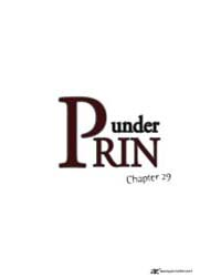 Under Prin 29 Volume Vol. 29 by