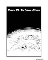 Yu Yu Hakusho 173 : the Picture of Peace Volume Vol. 173 by Togashi, Yoshihiro