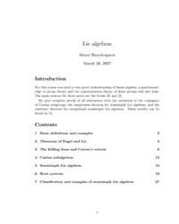 Lie Algebras Notes by Skorobogatov, Alexei