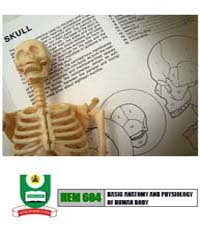 Basic Anatomy and Physiology of Human Bo... by Osunderu, A. O.