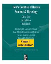 Hole's Essentials of Human Anatomy & Phy... by Eisenhauer, Melissa