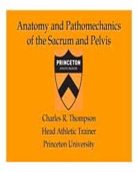 Anatomy and Pathomechanics of the Sacrum... by Thompson, Charles R.