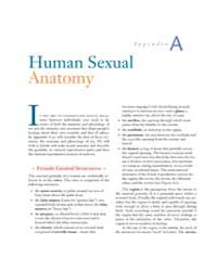 Human Sexual Anatomy by Technical Books Center