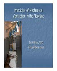 Principles of Mechanical Ventilation in ... by Palmer, Jon