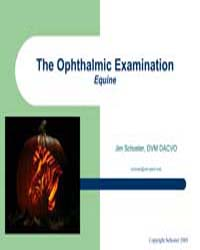 The Ophthalmic Examination by Schoster, Jim