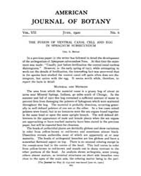 American Journal of Botany : 1920 Vol. 7... Volume Vol. 7 by Jernstedt, Judy