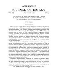American Journal of Botany : 1920 Vol. 7... Volume Vol. 7 by Jernstedt, Judy