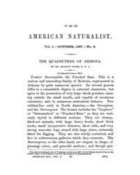 The American Naturalist : 1867 Vol. 1 No... Volume Vol. 1 by McPeek, Mark, A.
