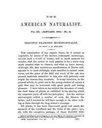 The American Naturalist : 1870 Vol. 3 No... Volume Vol. 3 by McPeek, Mark, A.
