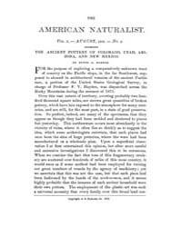 The American Naturalist : 1876 Vol. 10 N... Volume Vol. 10 by McPeek, Mark, A.