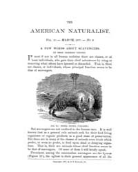 The American Naturalist : 1877 Vol. 11 N... Volume Vol. 11 by McPeek, Mark, A.