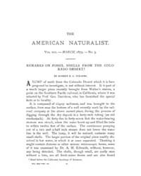 The American Naturalist : 1879 Vol. 13 N... Volume Vol. 13 by McPeek, Mark, A.