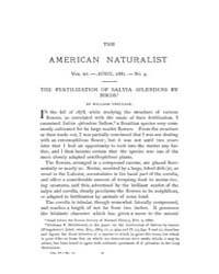The American Naturalist : 1881 Vol. 15 N... Volume Vol. 15 by McPeek, Mark, A.