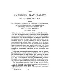 The American Naturalist : 1882 Vol. 16 N... Volume Vol. 16 by McPeek, Mark, A.