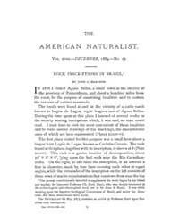 The American Naturalist : 1884 Vol. 18 N... Volume Vol. 18 by McPeek, Mark, A.