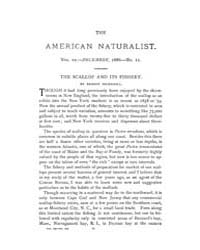 The American Naturalist : 1886 Vol. 20 N... Volume Vol. 20 by McPeek, Mark, A.