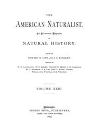 The American Naturalist : 1889 Vol. 23 N... Volume Vol. 23 by McPeek, Mark, A.