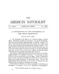 The American Naturalist : 1889 Vol. 23 N... Volume Vol. 23 by McPeek, Mark, A.