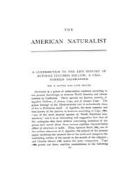 The American Naturalist : 1899 Vol. 33 N... Volume Vol. 33 by McPeek, Mark, A.