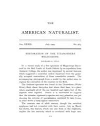 The American Naturalist : 1905 Vol. 39 N... Volume Vol. 39 by McPeek, Mark, A.