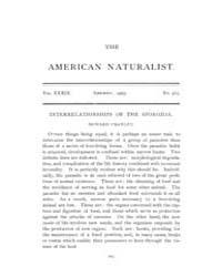 The American Naturalist : 1905 Vol. 39 N... Volume Vol. 39 by McPeek, Mark, A.