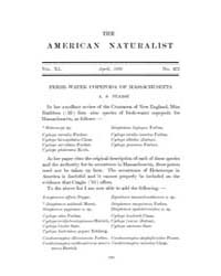 The American Naturalist : 1906 Vol. 40 N... Volume Vol. 40 by McPeek, Mark, A.