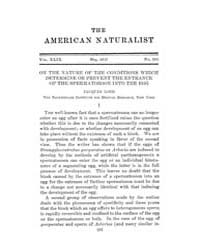 The American Naturalist : 1915 Vol. 49 N... Volume Vol. 49 by McPeek, Mark, A.