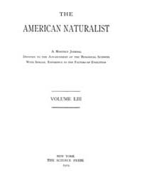 The American Naturalist : 1919 Vol. 53 N... Volume Vol. 53 by McPeek, Mark, A.