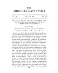 The American Naturalist : 1919 Vol. 53 N... Volume Vol. 53 by McPeek, Mark, A.