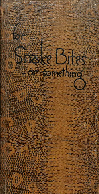 For Snakes Bites or Something by